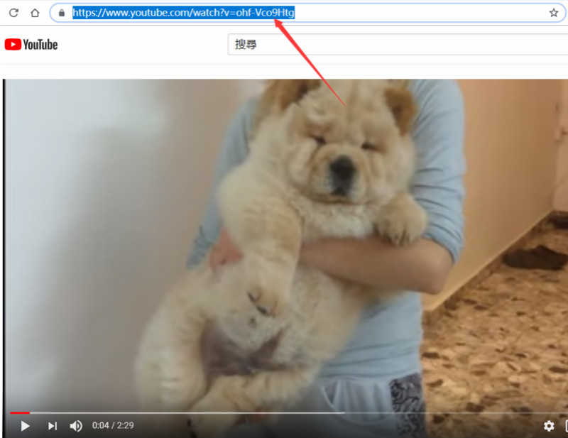 複製YouTube影片URL